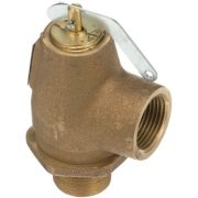 steam safety relief valve
